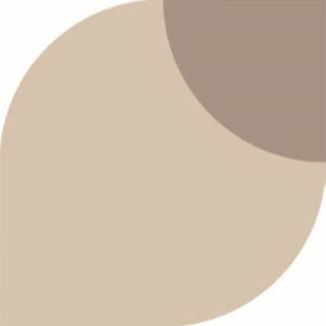 Taupe 35