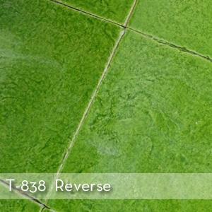 Thumbnail_T-838_Reverse.jpg