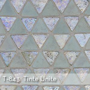 Thumbnail_T-843_Tinte Unite (1).jpg