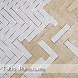 Thumbnail_T-819_Panorama.jpg