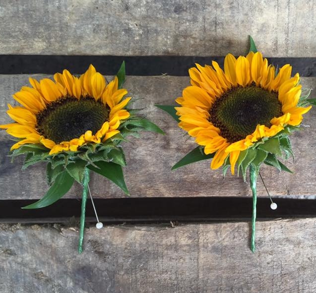 Kate sunflower buttonhole.jpg