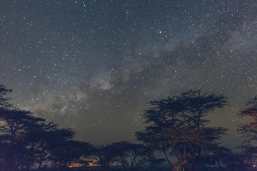Mara-Day1-_07A1337.jpg