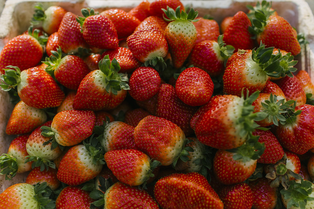 USAID-Israel-Day5-Strawberries-TD4A8231.jpg