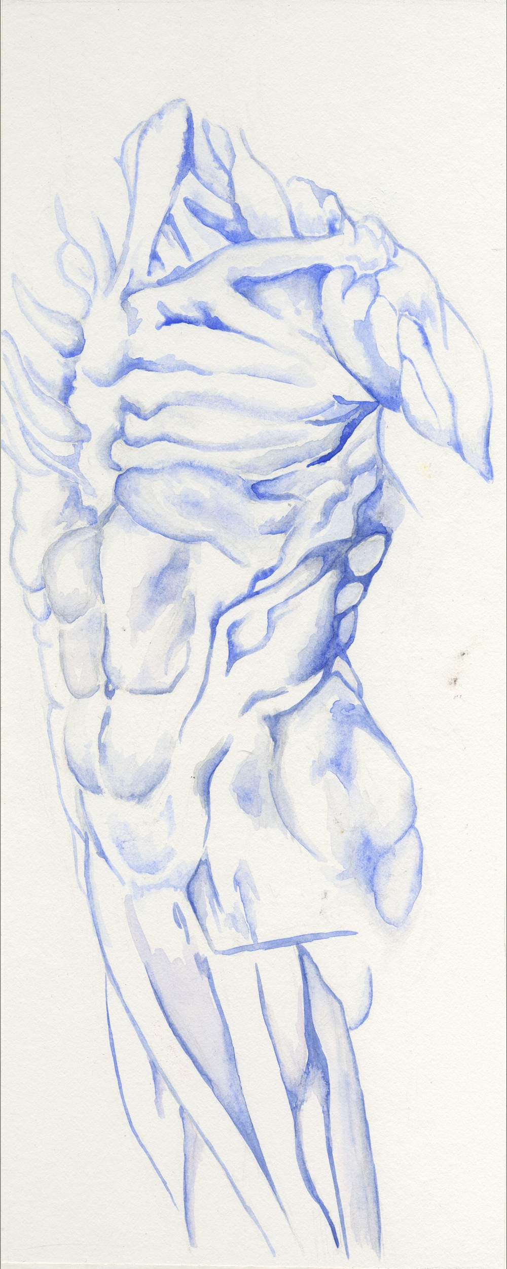 "Bleached Blue Body  WaterColor  6"" x 10"""