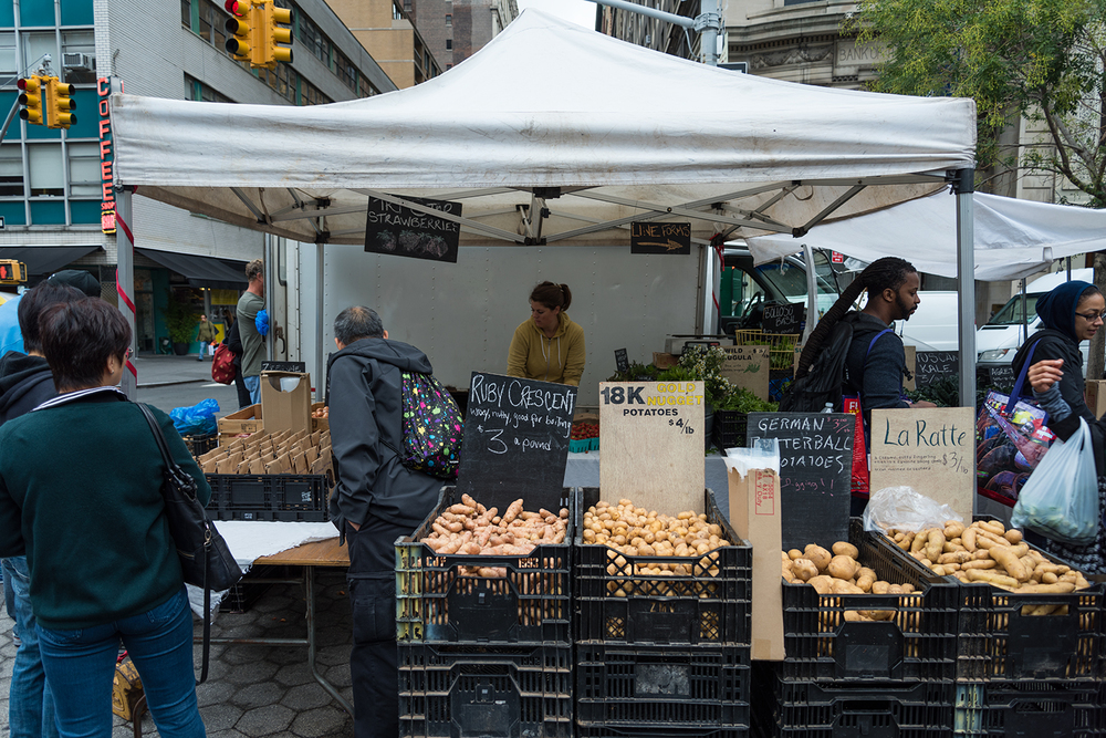 ROCK MAMA NYC LIFESTYLE BLOG - MY FAVORITES FROM UNION SQUARE GREEN MARKET
