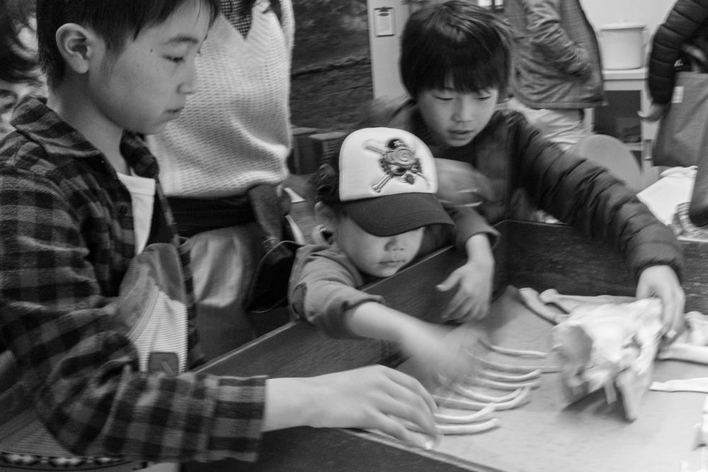 Rock Mama NYC - Family Japan Trip - Part 4