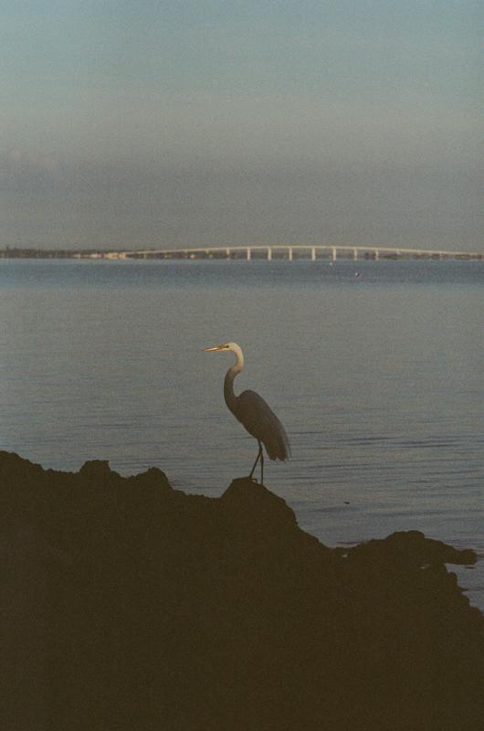 Hutchison Island, FL.