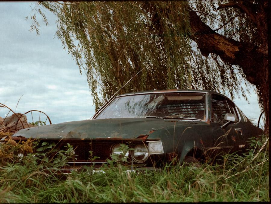 Boneyard mustang. Highway 3, Ontario.