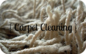 Carpet Cleaning & Upholstery Cleaning