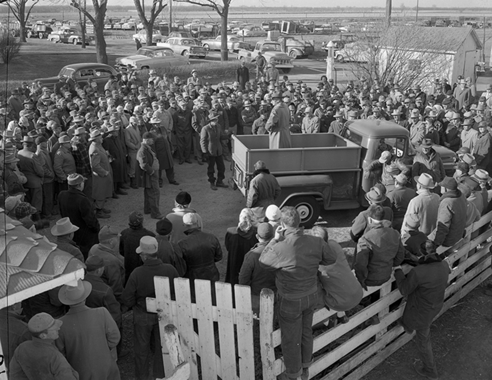 Farmers listen intently to the numbers repeated by auctioneer Luke J. Gaule during the sale of 164 acres of farmland in January 1956. The sale of land and related farming equipment owned by J. Ray Fletcher drew several hundred people to the farm, located four miles south of Auburn. Mrs. Lawrence Reichert of Divernon paid $118,270 for the ground, or $610 an acre, at the time a record for Sangamon County. Today, farmland can sell for $12,000 an acre or more, depending on several factors. The sale also included 135 head of Hampshire hogs, 13 head of cattle, hog houses, water tanks and water heaters, a 12-foot self-propelled combine and a supply of baled alfalfa and straw, among other things. Gaule told the Illinois State Journal that the Fletcher property was one of the finest pieces of farmland he had ever sold. Published Feb. 1, 2014. File/ The State Journal-Register