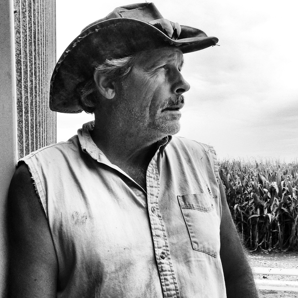 "On the eve of harvest, Loami-area farmer Tim Lash is ready to go. Wet spring weather has delayed most farmers from getting into the fields sooner, but that's not what has them worried. ""No, this year the main stress is the price. Will my 180, 190-bushel corn cover the costs and give me a profit I need to continue?"" says Lash. Corn prices are low and reflect an over-correction in the market still trying to find its equilibrium after soaring last year because of limited supply caused by severe drought."