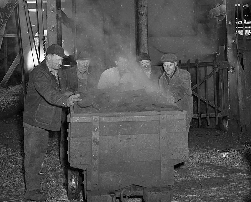 One of the first cart loads of coal brought to the surface at Panther Creek Mine No. 5, operated by members of the Progressive Mine Workers of America, March 3, 1950. The PMWA went on strike in February.