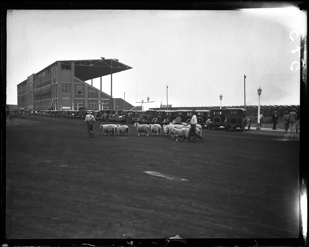 Illinois State Fairgrounds circa 1931. File/The State Journal-Register.