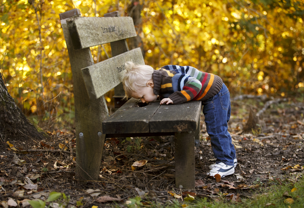 Lucas Riley peers at a shell he just dropped through a hole in a bench at Lincoln Memorial Gardens during a walk with his mother Kelly and grandparents Danny and Linda Smith Monday, Oct. 20, 2014.  Monday's temperatures reached the low 70's. Ted Schurter/The State Journal-Register