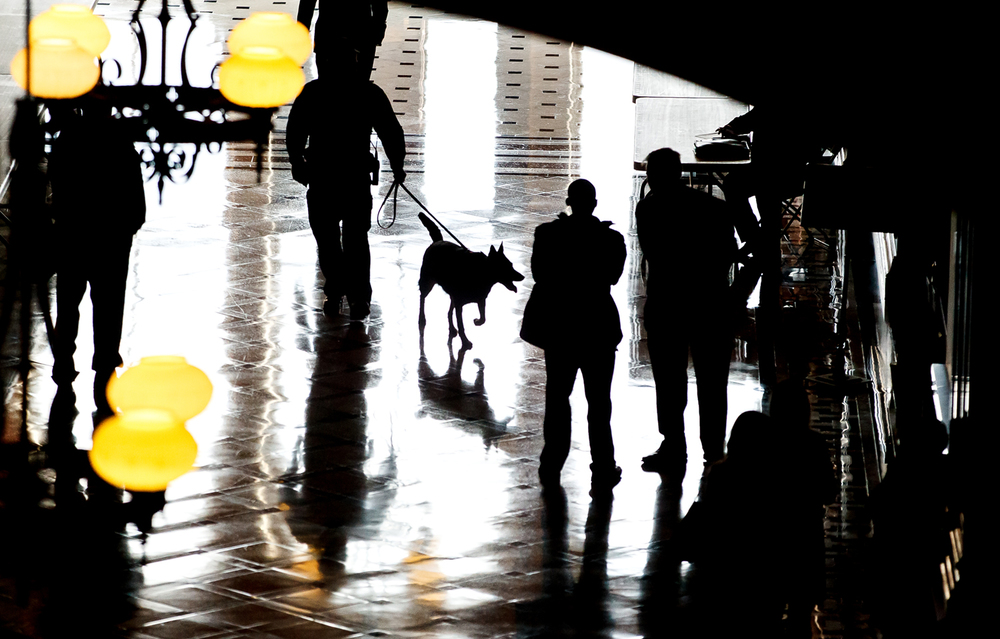 The Illinois State Capitol police dogs patrol outside the committee rooms during the first day of veto session at the Illinois State Capitol, Wednesday, Nov. 19, 2014, in Springfield, Ill. Justin L. Fowler/The State Journal-Register