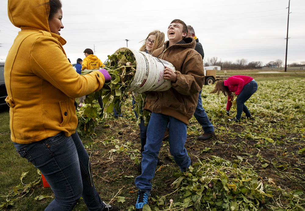 Athens High School students Melodie Starkey, left, and Cody Carter laugh as they try to pry apart two five gallon buckets as they harvest turnips at the Farm Services Administration Community Garden Monday, Nov. 24, 2014. Ted Schurter/The State Journal-Register