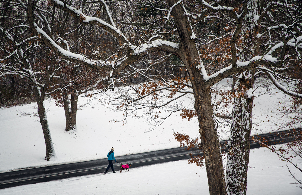 "Walkers were treated to their first taste of snow for this season in Lincoln Park as a little over 2"" blanketed the area, Thursday, Nov. 27, 2014, in Springfield, Ill. Justin L. Fowler/The State Journal-Register"