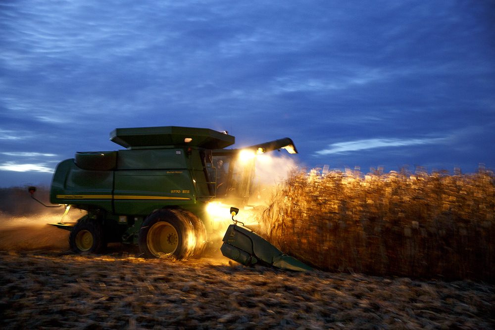 Shane Norris runs a combine in a cornfield near Waverly that is farmed by Norris Farms Sept. 23, 2014. The pace of harvesting depends on the weather, as long as it's suitable, farmers put in long days to get the job done. Rich Saal/The State Journal-Register