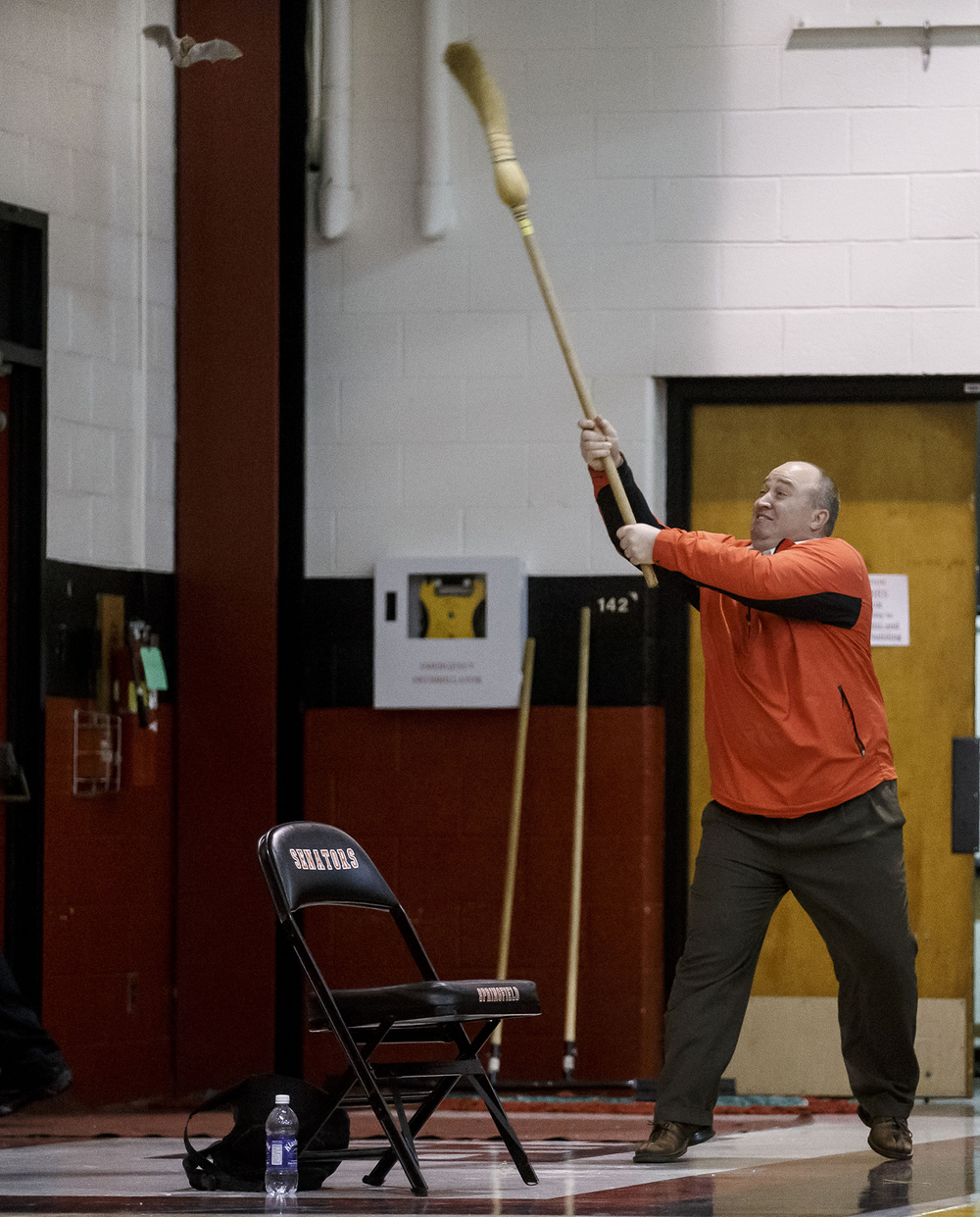 Springfield High School principle Mike Grossen uses a broom to encourage a bat to leave the gym during the Girls Class 3A Springfield Regional semifinal at Springfield High School, Wednesday, Feb. 19, 2014. Justin L. Fowler/The State Journal-Register