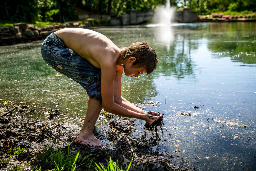 "Zach Gibbs, 12, sorts through leaves and mud looking for tadpoles and young frogs at the lagoon in Lincoln Park, Monday, June 2, 2014, in Springfield, Ill. Gibbs has been coming to the lagoon looking for frogs to see how they grow from tadpoles. ""Basically I like seeing how they grow up ,"" said Gibbs. ""I've done it so many times I know where they hide.""  Justin L. Fowler/The State Journal-Register"