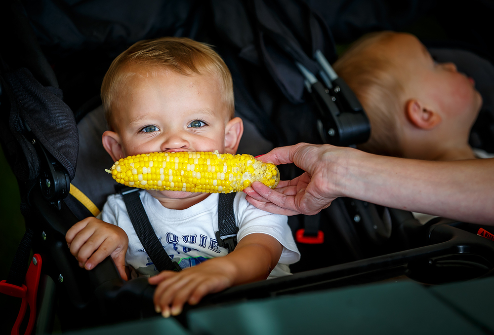 Augie Jimenez, 1, gets a little help with his ear of corn while sharing with his twin brother, Charlie, right, during the Chatham Jaycees 41st Annual Sweet Corn Festival at the Chatham Community Park, Friday, July 18, 2014, in Chatham, Ill. Justin L. Fowler/The State Journal-Register