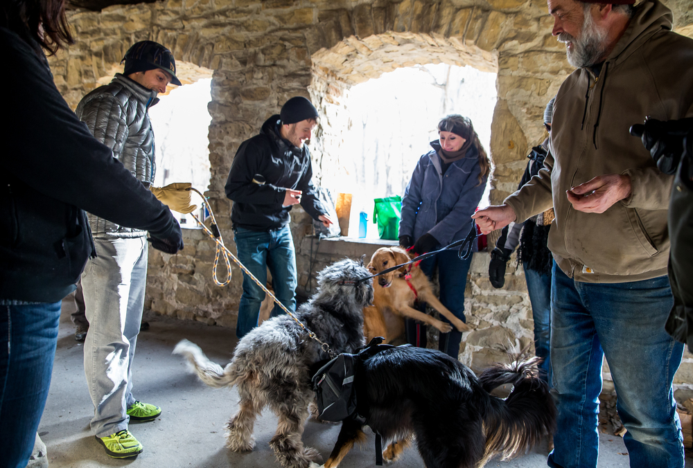 Owners let their dogs get acquainted in the Stone Shelter prior to going out on the hike during the Sangamon Valley Group of the Sierra Club's Stone Soup Hike at Carpenter Park, Thursday, Jan. 1, 2015, in Springfield, Ill. Justin L. Fowler/The State Journal-Register