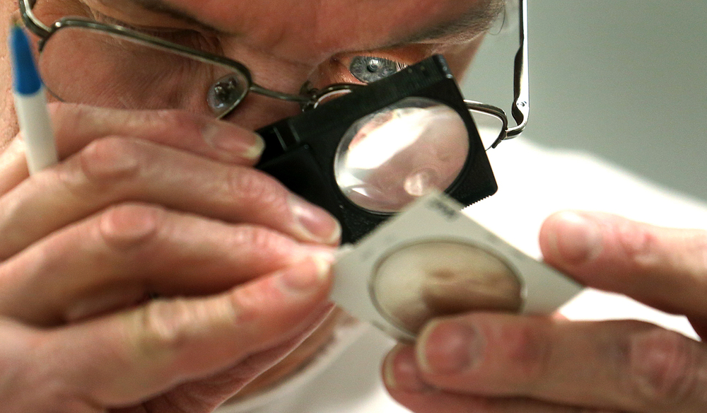 Roger Wankel inspects one of the silver dollars on the auction block during a monthly meeting of the Central Illinois Numismatic Association at the Knights of Columbus Hall 4175 in Springfield, Jan. 8, 2015. David Spencer/The State Journal-Register