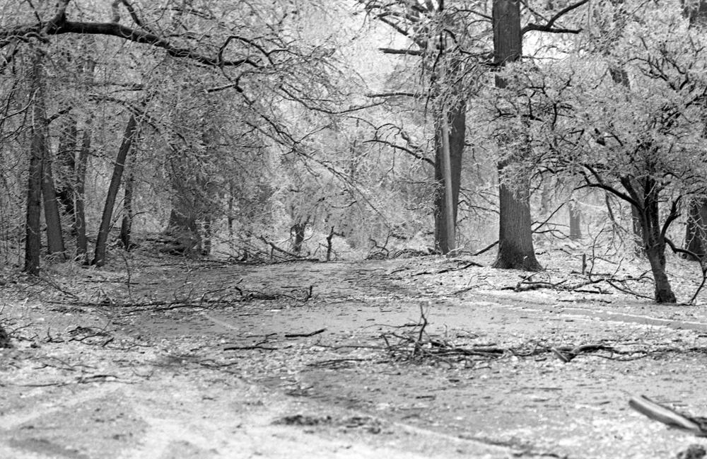 Washington Park, March 1978.