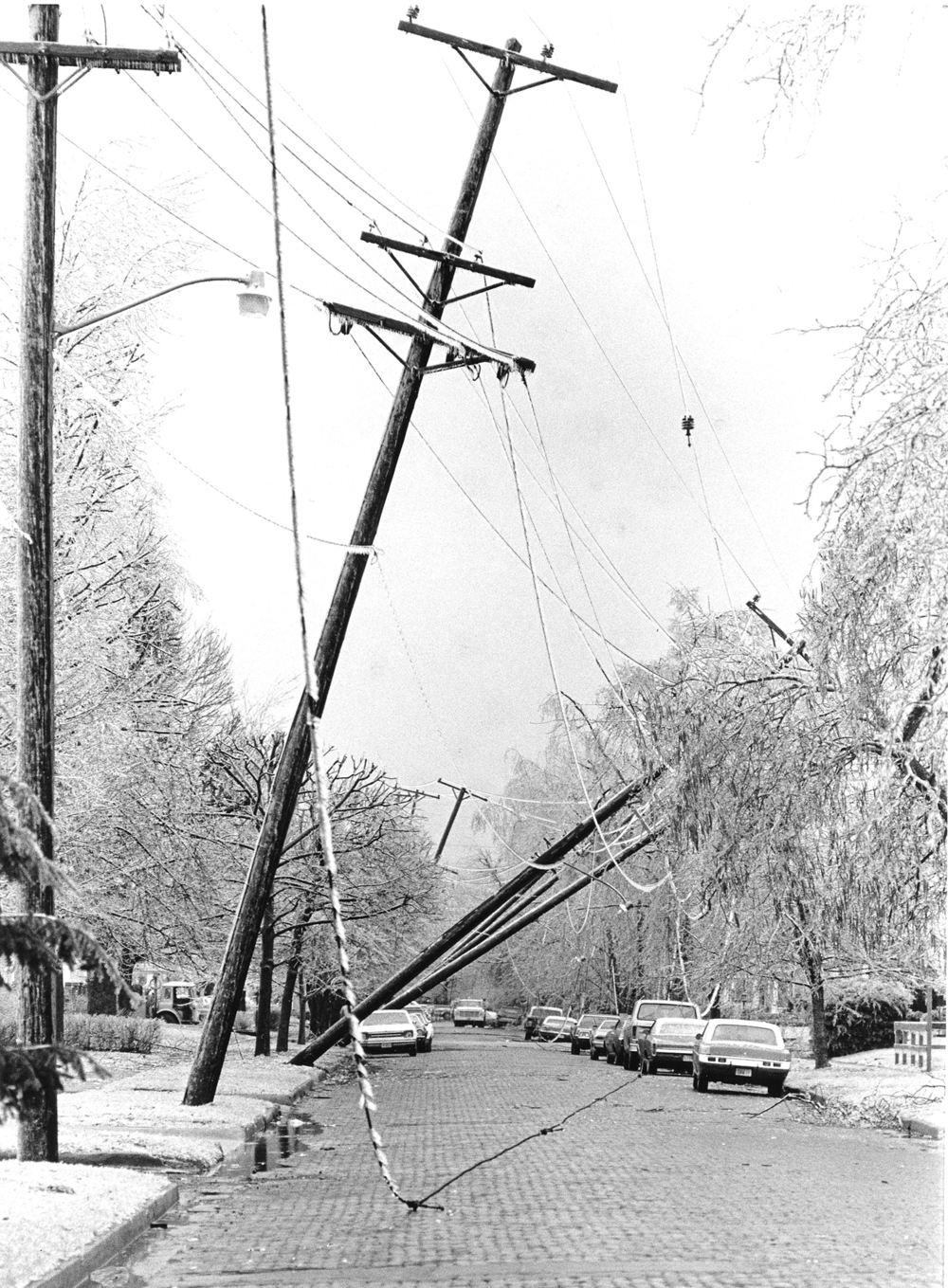 Several utility poles lean over in the 1300 block of S. Pasfield Street.