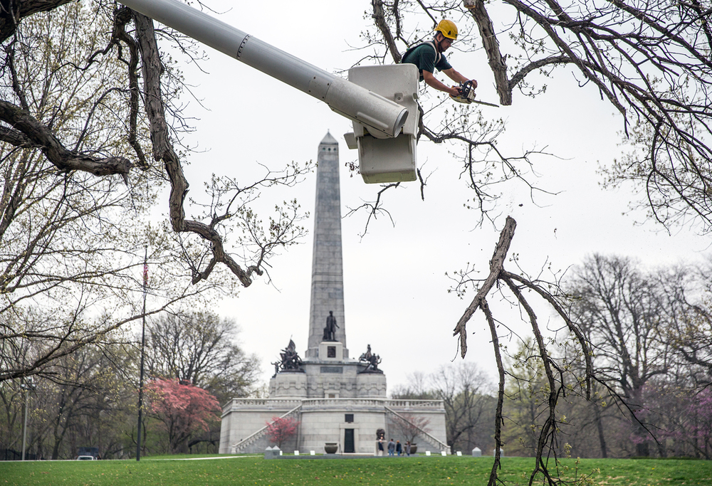 "Martin Ferreira, a crew leader with Bartlett Tree Experts, trims a branch from a shagbark hickory tree near Lincoln's Tomb in Oak Ridge Cemetery, Thursday, April 16, 2015, in Springfield, Ill. Crews from Bartlett out of Chicago and from Throop Tree Service of Springfield volunteered their time to help trim and clean up ""witness trees"" throughout the cemetery, so called because they are old enough to have been alive when Abraham Lincoln was buried in 1865. Justin L. Fowler/The State Journal-Register"