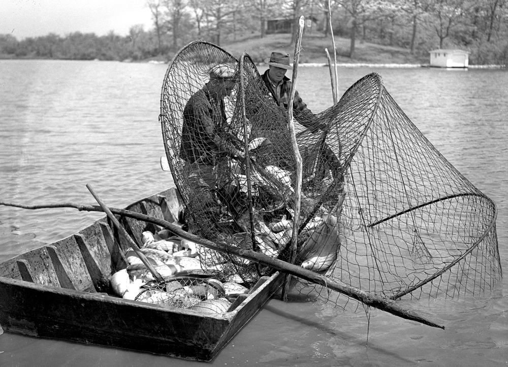 "Fisherman from Dixon Fisheries in Peoria harvested nearly 30,000 pounds of ""rough"" or nuisance fish from Lake Springfield during the month, May 12, 1943. The intent was to reduce the amount of fish that weren't considered game fish. File/The State Journal-Register