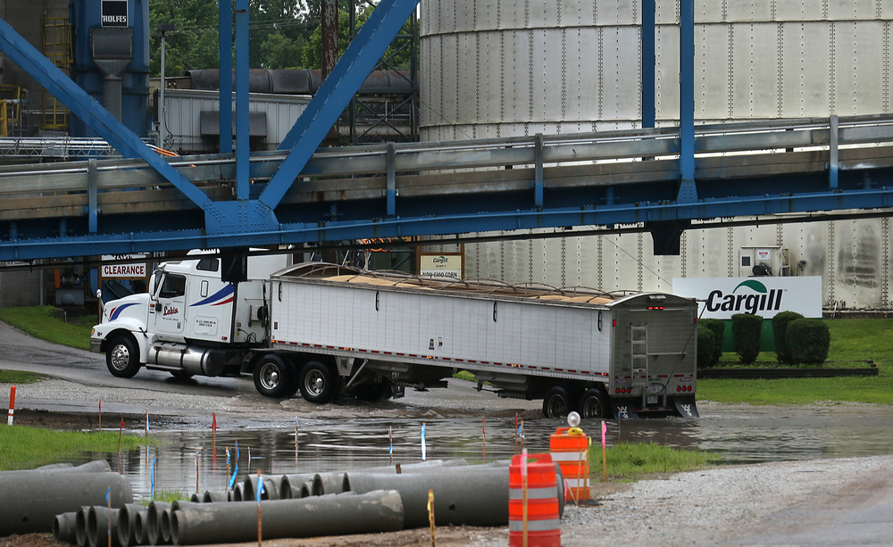 At one point, the wheels of this semi trailer truck hauling grain to the Cargill grain elevator in Meredosia were completely submerged in a flooded roadway near the entrance of the facility Wednesday morning.  David Spencer/The State Journal-Register