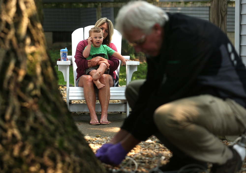 Homeowner Debby Howry watched along with her grandson Hudson Gilbert, 2, as arborist Jeff Palmer protects the ash tree against the ash borer. David Spencer/The State Journal-Register