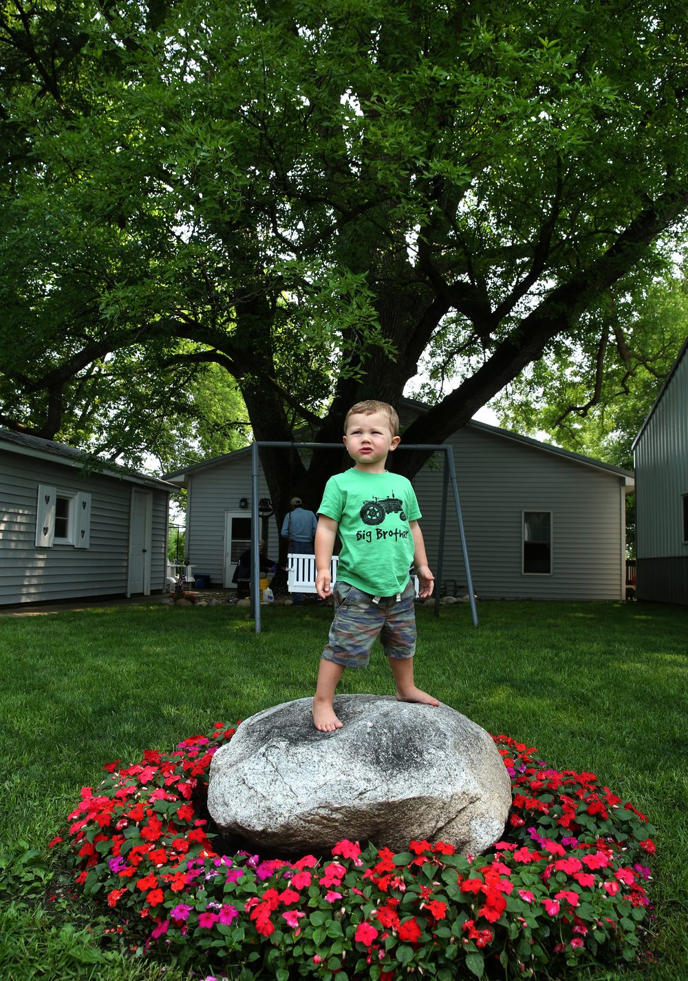 Hudson Gilbert, 2, the grandson of the Howry's, strikes a pose in front of the Champion ash tree on Tuesday. Hudson still has a bit of growing to catch up with the big tree.David Spencer/The State Journal-Register