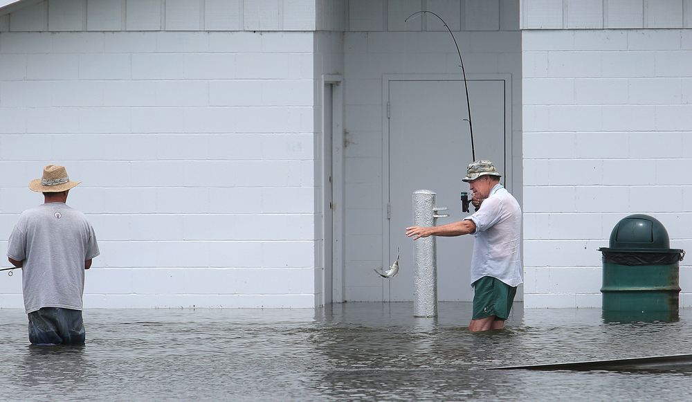 Jacksonville angler Steve Shaw pulls in a White Bass while standing in the flooded boat ramp area of the Naples Boat Club next to the Illinois River on Thursday afternoon. At left is fellow angler Steve Sherrill of Jacksonville. David Spencer/The State Journal-Register