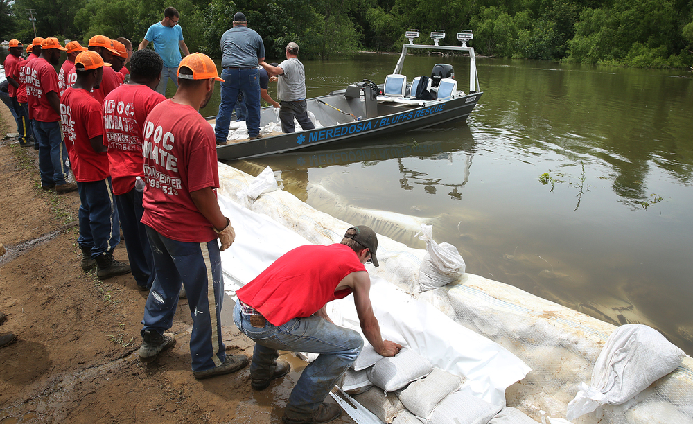 IDOC inmates form a line as they place sandbags atop the levee backing up to Lake Rd. on the north side of Meredosia Thursday.  David Spencer/The State Journal-Register