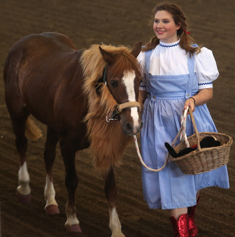 Lana Nickelson of Sangamon county, playing Dorothy from the Wizard of Oz, smiles for the judges with her horse Cutie, playing the role of the Cowardly Lion from the film. David Spencer/The State Journal-Register