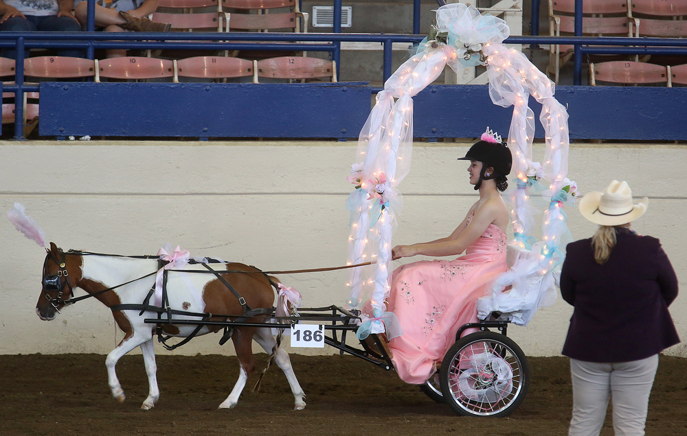 A princess going to the ball was the theme for Emily Selby of Madison county, who goes there lead by pony Roaseannes Rosette.  David Spencer/The State Journal-Register