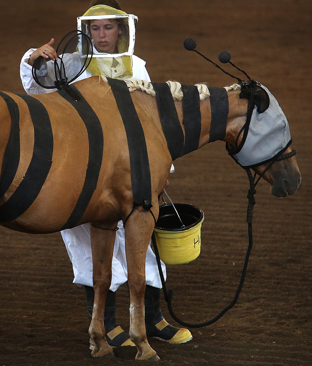 Bumblebee wings worn by the horse Missy (Miss Smarty Pants) are adjusted by owner Shelby Zellers of Clark county, dressed as a bee keeper holding a pot of honey.David Spencer/The State Journal-Register