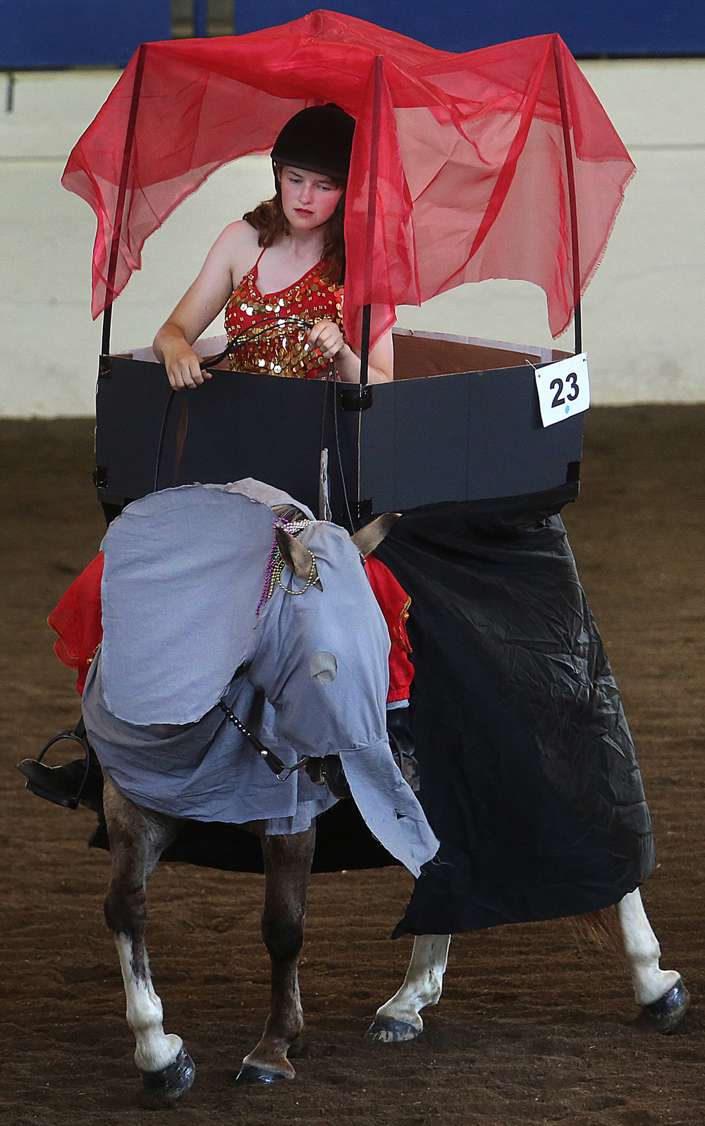 When your horse is an elephant, things are bound to get interesting in the show ring. Jessica Hall of Warren County puts her steed, aka: Marvelous Marvin Stud Muffin- through its paces for judges in the 4-H Junior Horse Show Costume Class Thursday, July 23, 2015 in the coliseum at the Illinois State Fairgrounds. David Spencer/The State Journal-Register