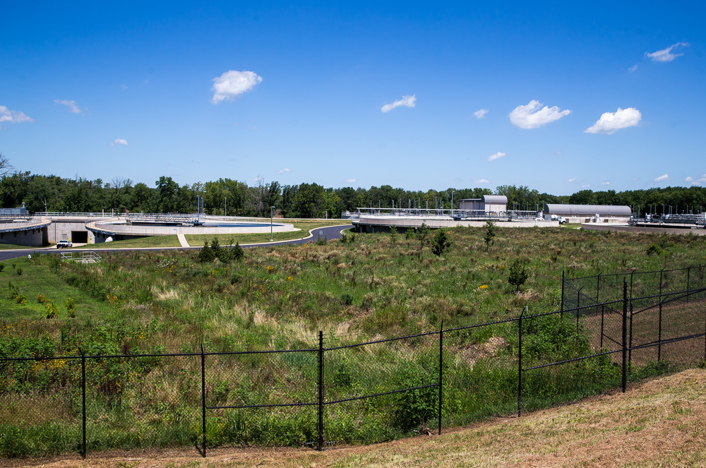 The surrounding areas of the Springfield Metro Sanitary District's Spring Creek wastewater treatment plant were converted to prairie grass to improve the atheistic of the complex as well being better for the environment. Justin L. Fowler/The State Journal-Register