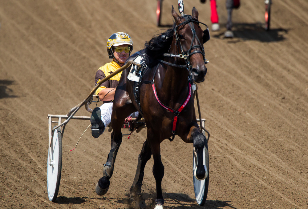 Michael Oosting drives Awfully Emotional to victory in the Illinois State Fair Colt Stakes 2 Year Old Fillies (Illinois Conceived & Foaled) during harness racing at the Illinois State Fairgrounds, Friday, Aug. 14, 2015, in Springfield, Ill. Justin L. Fowler/The State Journal-Register