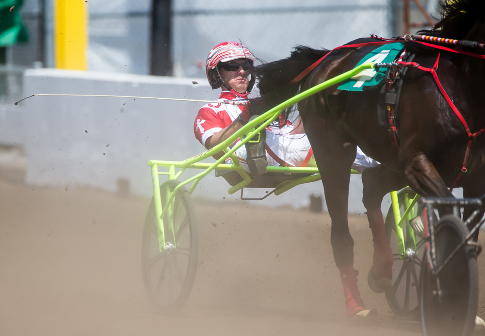 Matt Krueger drives Lora Lee Breeze in the Illinois State Fair Stake Fillies and Mares (Illinois Concieved & Foaled) during harness racing at the Illinois State Fairgrounds, Friday, Aug. 14, 2015, in Springfield, Ill. Justin L. Fowler/The State Journal-Register