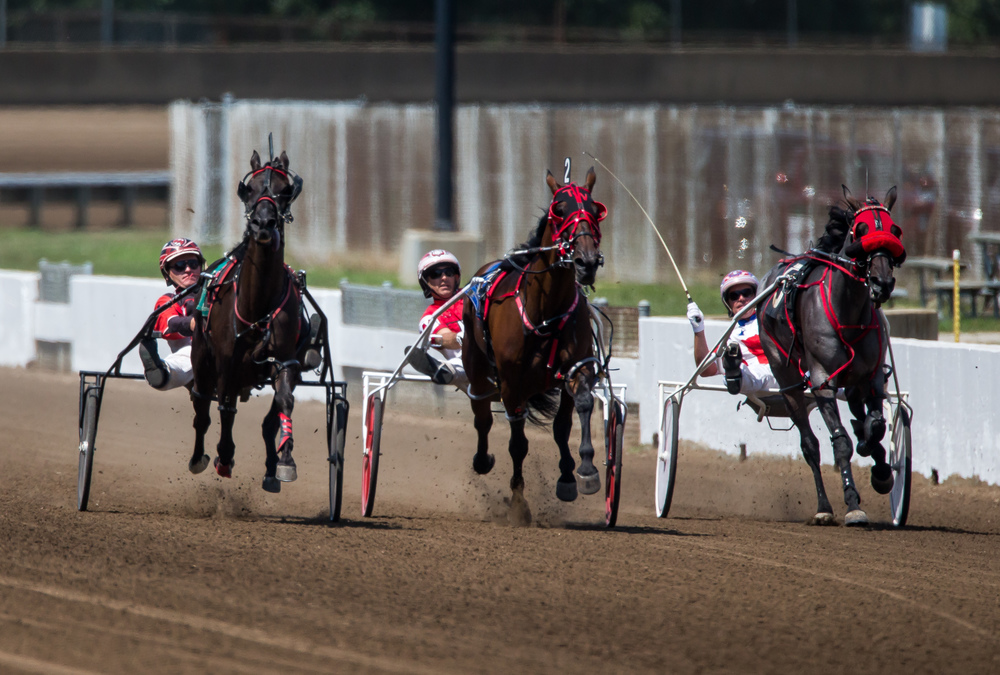 Michael Rogers drives Incredible Filly to victory on the outside over Moon Bay Dancer, center, and Just By Design, right, in the Illinois State Fair Stake Fillies and Mares (Illinois Conceived & Foaled) during harness racing at the Illinois State Fairgrounds, Friday, Aug. 14, 2015, in Springfield, Ill. Justin L. Fowler/The State Journal-Register