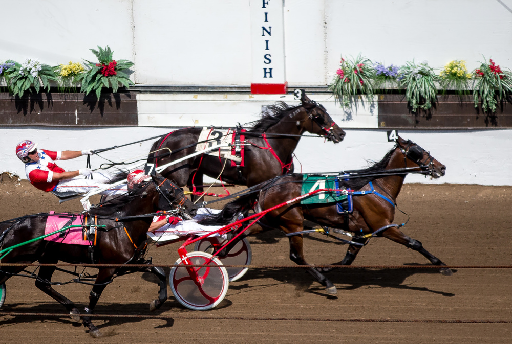 Matt Krueger drives Royale Rose to narrow victory in the Illinois State Fair Colt Stakes 2 Year Old Colts & Geldings (Illinois Conceived & Foaled) during harness racing at the Illinois State Fairgrounds, Friday, Aug. 14, 2015, in Springfield, Ill. Justin L. Fowler/The State Journal-Register