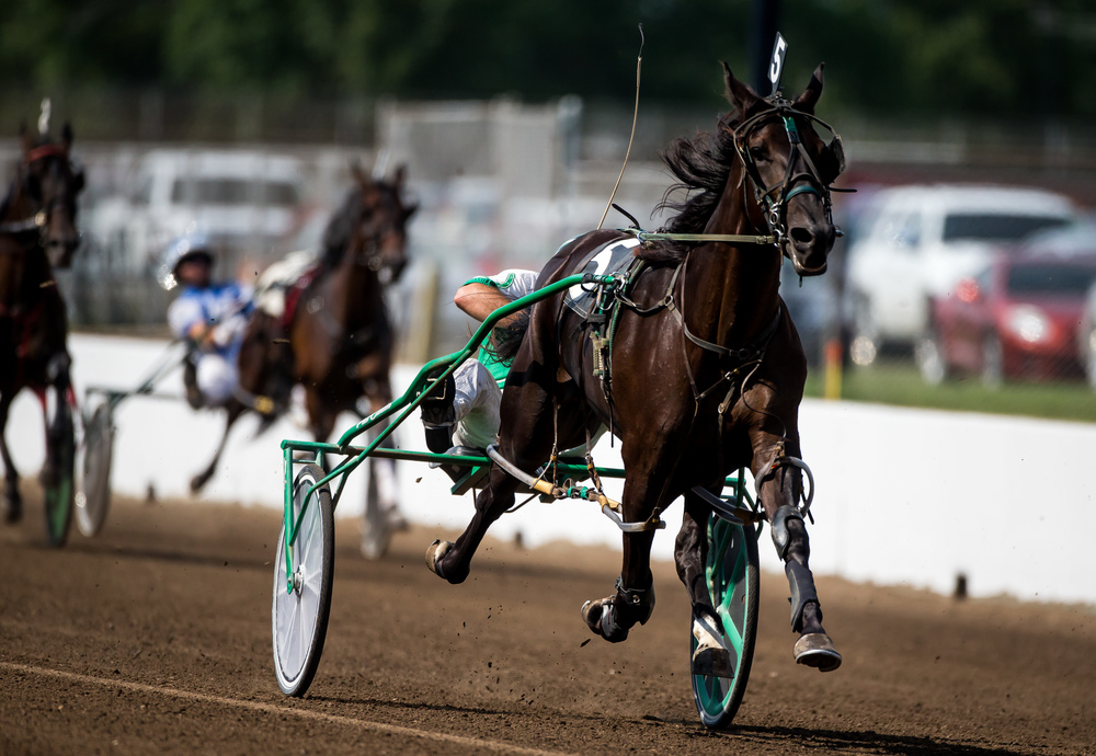 Bc's Belle Street takes the victory on the outside being driven by Pat Curtin in the Fillies & Mares Non-winners of 2 Pari-mutuel Races or $4,000 Lifetime during harness racing at the Illinois State Fairgrounds, Friday, Aug. 14, 2015, in Springfield, Ill. Justin L. Fowler/The State Journal-Register