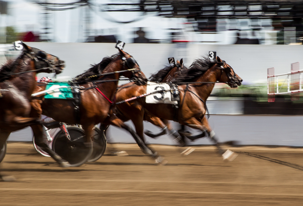 Horses burst out of the start in the Illinois State Fair Stake Horses & Geldings (Illinois Conceived & Foaled) during harness racing at the Illinois State Fairgrounds, Saturday, Aug. 15, 2015, in Springfield, Ill. Justin L. Fowler/The State Journal-Register