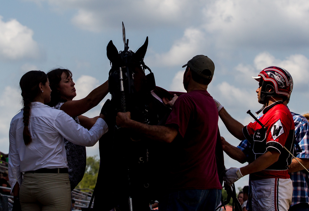 Driver Kyle Wilfong brings Lex into the winner's circle after winning the Illinois State Fair Colt Stakes 3 Year Old Fillies (Illinois Conceived & Foaled) during harness racing at the Illinois State Fairgrounds, Saturday, Aug. 15, 2015, in Springfield, Ill. Justin L. Fowler/The State Journal-Register