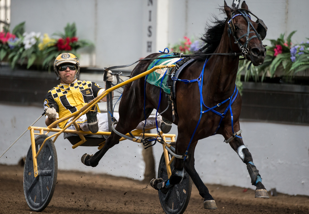 Driver Robert Smolin takes the win with Fox Valley Truth in the Illinois Department of Agriculture 2 Year Old Fillies (Illinois Conceived & Foaled) during harness racing at the Illinois State Fairgrounds, Saturday, Aug. 15, 2015, in Springfield, Ill. Justin L. Fowler/The State Journal-Register