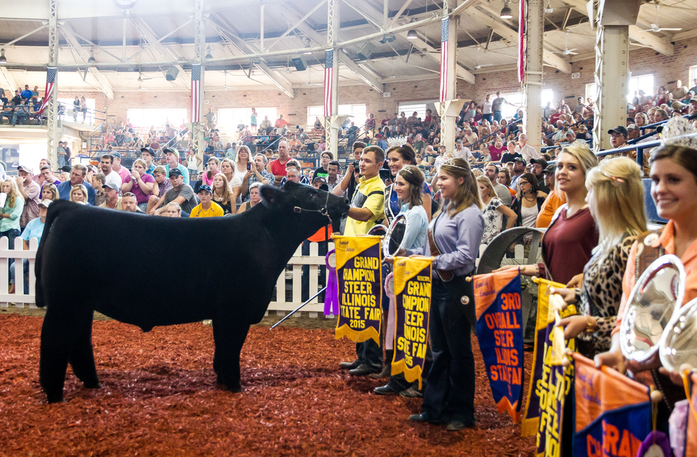 A.J. Line of Mercer County stands with his Jr. Grand Champion Steer during the Parade of Champions in the Coliseum at the Illinois State Fairgrounds, Saturday, Aug. 15, 2015, in Springfield, Ill. Justin L. Fowler/The State Journal-Register